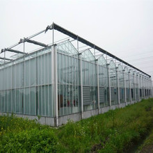 High Quality 10-year Warranty ISO Certification 100%Bayer Marolon polycarbonate sheet green house with UV Protection