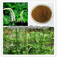 ISO Factory Supply 100% Pure Natural Cimicifuga Racemosa Extract Powder with Triterpenoid Saponisc 5%10%HPLC