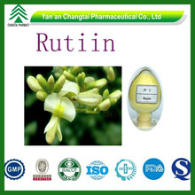 GMP ISO certificated factory supply Top quality competitive price Rutoside Plant extract powder