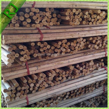 The best quality eucalyptus wooden sticks for broom handle