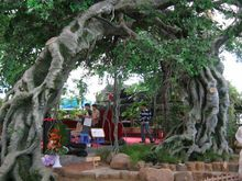 2014 hotsale Artificial Banyan Tree in Factory price fake ficus tree