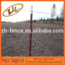 barbed wire security fence/grass boundary galvanized barbed wire