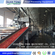 continuous conveyer belt dryer / Moringa Leaf Drying Machine