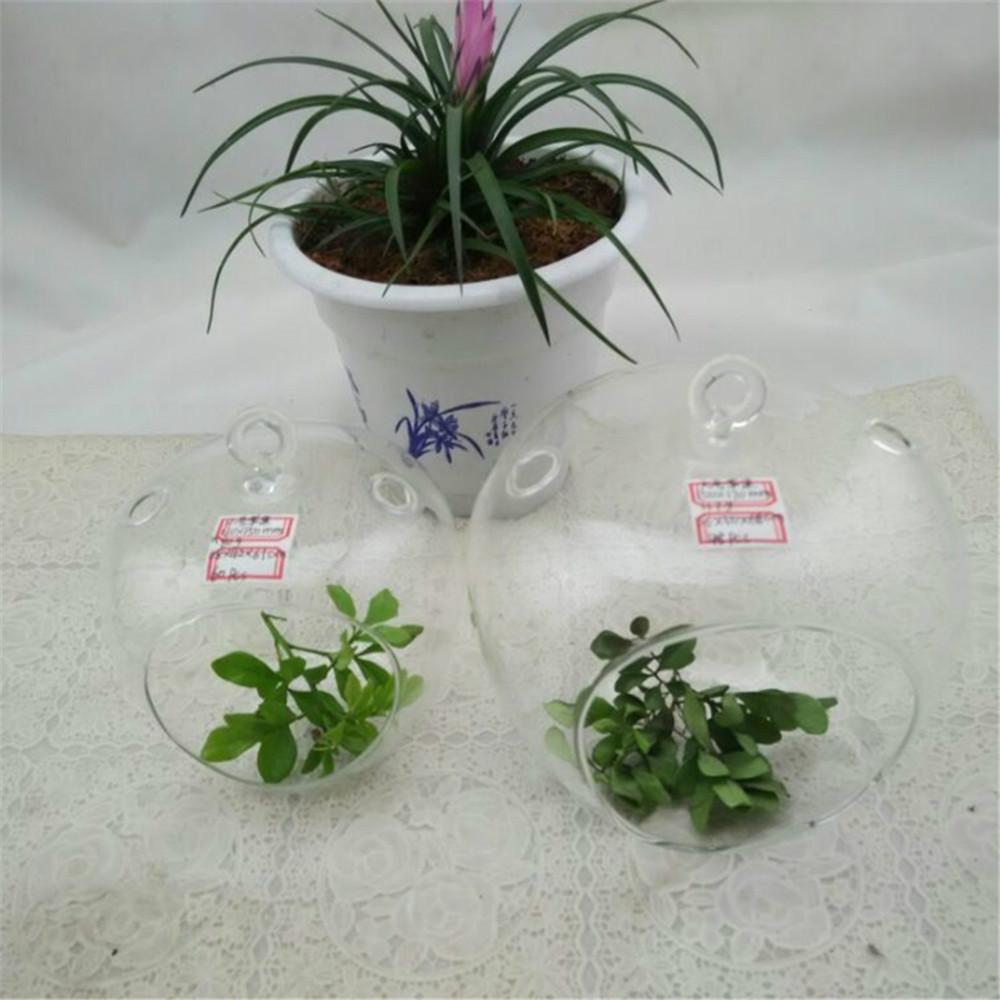 Vase pas cher for Vase deco pas cher