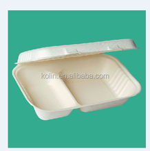 disposable sugarcane pulp food container 2 compartment