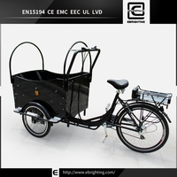 covered battery operated BRI-C01 motorized tricycles