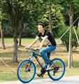 จักรยานเสือภูเขาราคา2015, จักรยานผู้ใหญ่