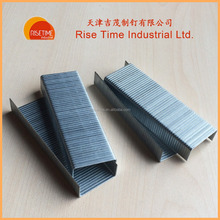 Galvanized 35 Carton Staples supplier