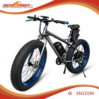 1000W S19-2 Brushless motor China chopper electric bike for sale