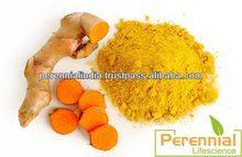 TURMERIC EXTRACT(MINIMUM 95% CURCUMIN)/CURCUMIN POWDER