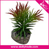 /product-gs/pine-needle-stone-potted-plant-green-leaves-for-home-company-decoration-60239998462.html