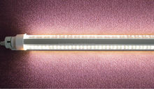 Double-side LED Tube advertising lamp 5ft
