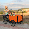 2015 hot sale adult electric cargo trike with CE