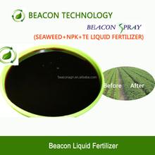 Hot sale Nature Humic Acid NPK fulvic acid liquid organic fertilizers