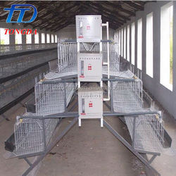 Hot selling cage for growing broiler with low price
