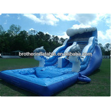 2013 inflatable dolphin water slide