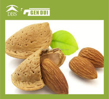 Bitter Apricot Kernels almond dried extract p.e. almond dried extract p.e.