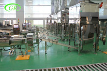 Bag filling and packing line