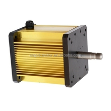 Electric Vehicle Traction Motor