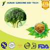 Made in China Broccoli seed P.E. HPLC 0.5%-10% Sulforaphane