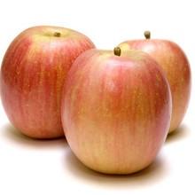 New season bulk fresh Fuji apple