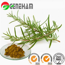 antioxidant supplement/ Food Preservative Raw Material/ Rosemary Extract