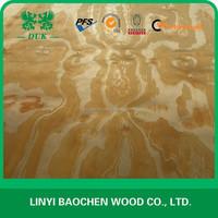 New Zealand Rotary cut Radiate pine veneer / 1270x2550mm types of wood veneer
