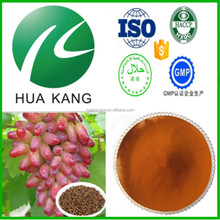 Skin whitening 100% natural grape seed extract powder with high quality,Skin care grape seed extract