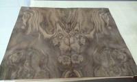 Black Walnut Burl Wood Veneer Good For Decoration