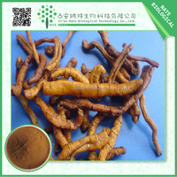 High quality Chinese Herbal Extract Siberian Milkwort Extract / Polygala Tenuifolia Extract 10:1 by TLC