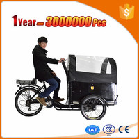 charging 5 hours 3 wheel motorized bike three electric cargo tricycle with our smart pie hub motor