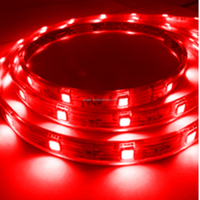 Waterproof LED Strips Light 30leds SMD 5050 Red Smart Lighting