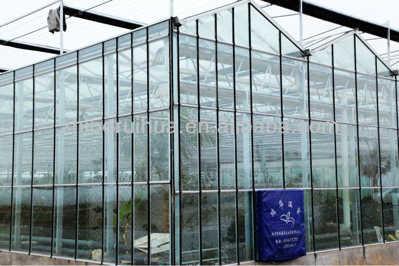 Grande Multi- campata in vetro effetto serra- serre commerciali
