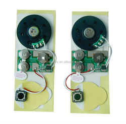 Re-recordable sound modules for toys