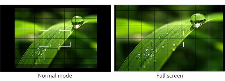 Camera 5D II Mode.jpg