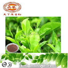 Tea Polyphenol GreenTea Extract / Water Soluble Black Tea Extract / Price White Tea Extract Powder