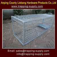 Humane Heavy Duty Folding Fox Cage Trap For Trapping