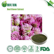 2015 hot sale free sample health food female product Red Clover Extract 40%