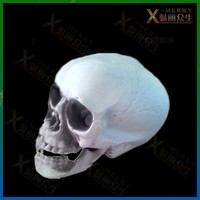 X-MERRY astonished skeleton skull props haunted house spook decoration wonderful idea to scare coward