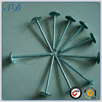 Attractive price high quality spring spike nail