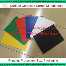 2mm 3mm 4mm 5mm 6mm twin wall plastic pp hollow polypropylene sheet