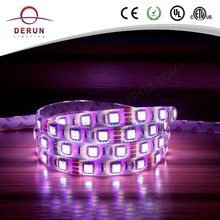 Good price high lumen waterproof rgb led tape 5050 with 3M adhesive