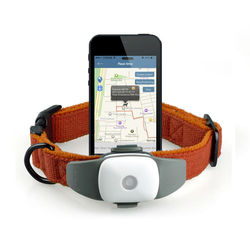 Automatically Protecting Pets from Losting Small GPS Tracking Device for Pets 2015