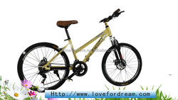 2014 Hot Selling mountain bike China/Rose finch 570