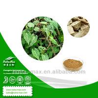 100% Natural Radix Polygoni Multiflori Extract Powder 10:1 20:1 HPLC