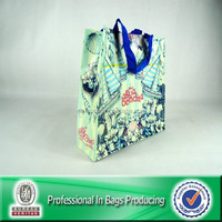 Custom Cheap Recycled Laminated PP Woven Gift Shopping Bag