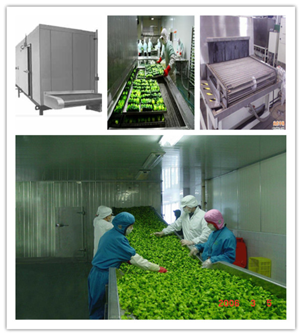 Machine de congélation rapide individuelle iqf/viande machine de congélation rapide