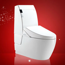 Ceramic One Piece Toilet Types Sanitary Ware Siphonic Washdown Water Closets