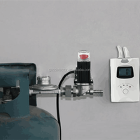 Gas detector with shut-off valve,domestic lpg gas detector for cylinder use and emergency shutoff