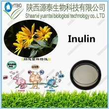 ISO certified factory supply High quality inulin 93%-99%/Natural herb extract chicory inulin powder